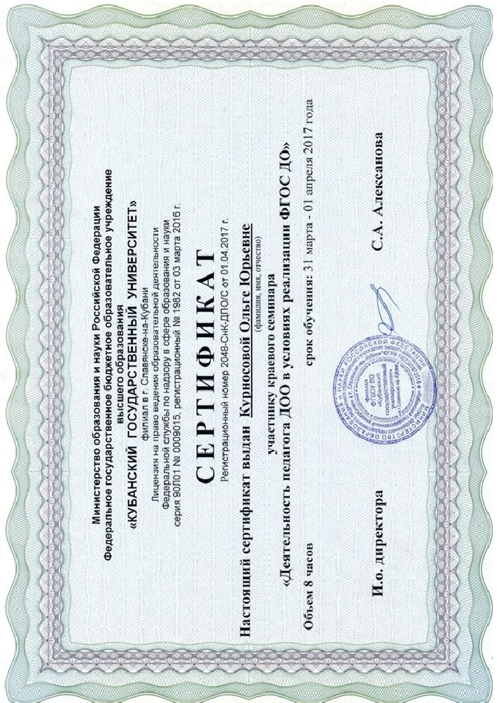 Сертификат участника краевого семинара КубГУ в филиале г. Славянск–на–Кубани «Деятельность педагога ДОО в условиях реализации ФГОС ДО»